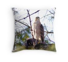 Red Shouldered Hawk with recent prey Throw Pillow