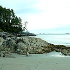 Tonquin Park, Tofino, BC by rsangsterkelly