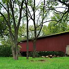 covered bridge by Penny Rinker