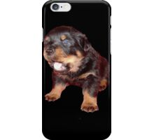 Rottweiler Puppy Isolated On Black iPhone Case/Skin
