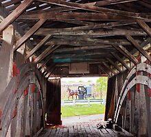 Through the bridge by Penny Rinker