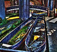 Abandoned Boats by inkedsandra
