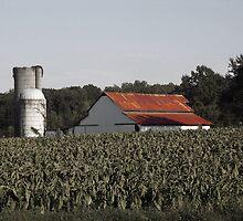Old Farm v2 by Sanguine