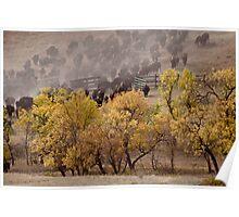 Thunder in the Black Hills Poster