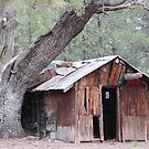 Old Miner's Shack by Jazzy724
