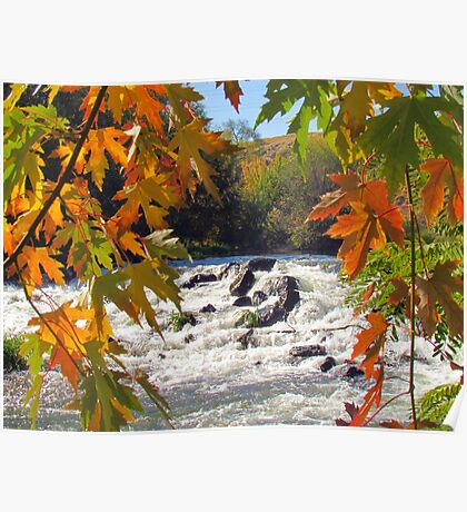 Autumn ~ Mother Nature at Her Finest  Poster