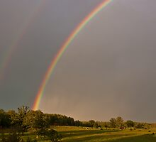 Double Rainbow Over Pasture by April Koehler