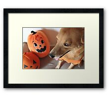 Lucia and the Great Pumpkin Framed Print