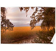 Wetlands in Southern Georgia Poster
