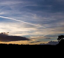 Panorama Silhouette, Avon Gorge by RSPatton