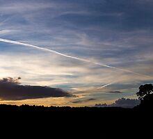 Panorama Silhouette, Avon Gorge by RSPatton