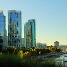 Autumn's Light on Coal Harbour 4 by Tracy Friesen