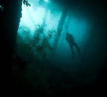 Diver Silhouette in Wreck by Kenji Ashman