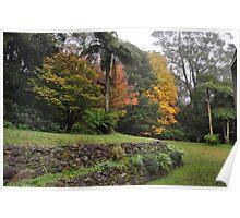 WOLLANGAMBE GARDENS, MOUNT WILSON, NSW. Poster