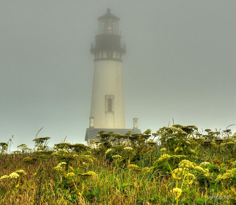 Foggy Morning on the Coast by Cynthia Broomfield
