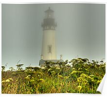Foggy Morning on the Coast Poster