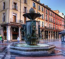 Golden Fountain Square by Tom Gomez