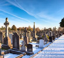 The Distance - Glasnevin Cemetery - Dublin by Mark Tisdale