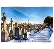 The Distance - Glasnevin Cemetery - Dublin Poster