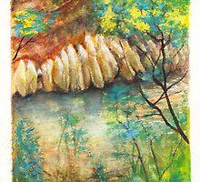 Mullum Wattle by Dai Wynn