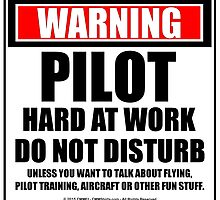 Warning Pilot Hard At Work Do Not Disturb by cmmei