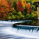 Fall Colours At Penman's Dam by jules572