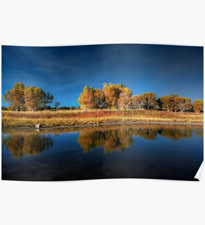 Blue Autumn Poster