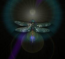 Dragonfly 2 by Marvin Hayes