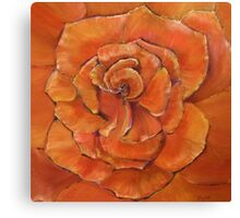 Blossoming Rose Canvas Print