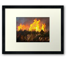 Burning Sugarcane - Bundaberg - Australia Framed Print