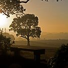 Bench at sunrise. by naranzaria