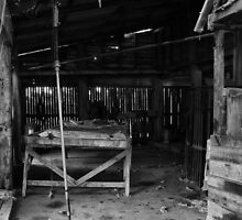 Shearers Shed #2 by Leanne Robson