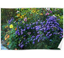 Display of Autumn Flowers Poster