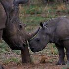 A Mothers Love by PBreedveld