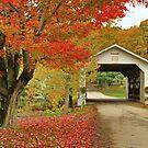 Fuller Bridge by Deborah  Benoit