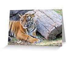Sleepy Rahni Greeting Card