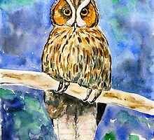 Wise Owl by Caroline  Lembke