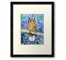 Wise Owl Framed Print
