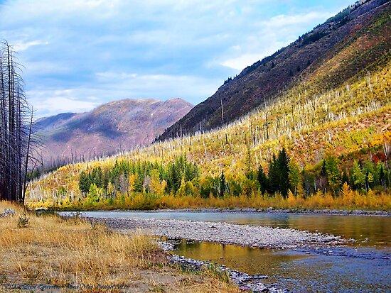 Glacier Park Autumn 4 by rocamiadesign