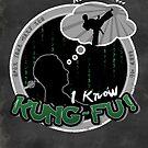 I Know Kung-Fu by thehookshot