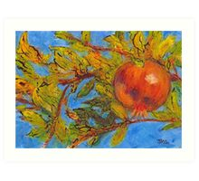 Pomegranate, Greece Art Print
