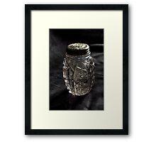 Found:  Salt Shaker Framed Print