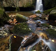 Catrigg Force II by Jeanie