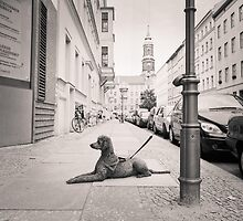 Poodle tied to street pole: Berlin by Ron Greer