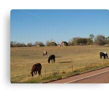 Fall on the South Dakota Prairie Canvas Print
