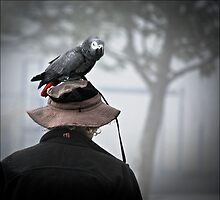 I always wear a bird on my head by carol brandt