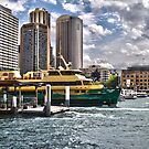 Sydney Harbor Ferry by AHakir