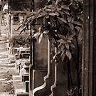 Cemetery of Montmartre by Tatiana Ivchenkova