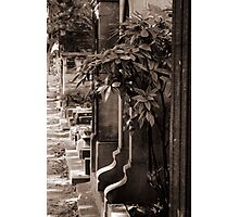 Cemetery of Montmartre Photographic Print