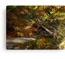 Autumn Lullaby Canvas Print